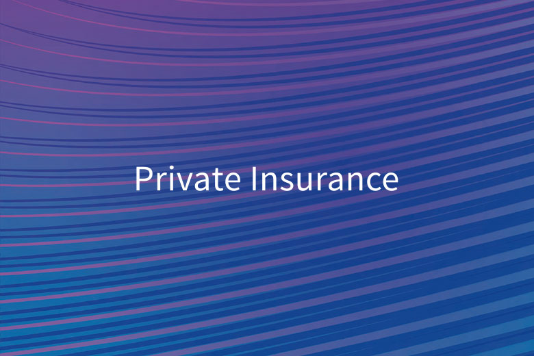 Beck private insurance pattern