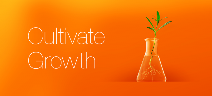 Plant in a test tube to represent growth through marketing.