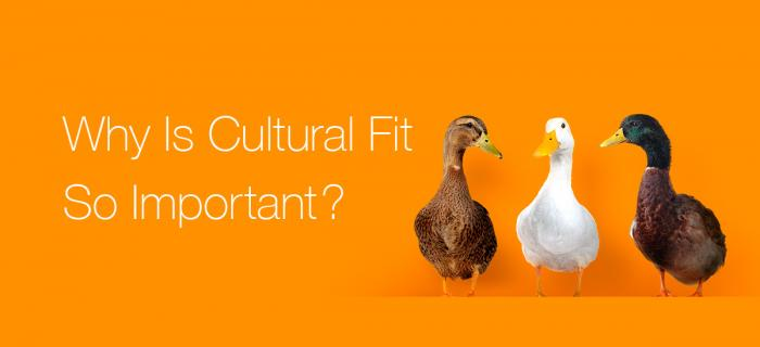 Why Is Cultural Fit So Important?